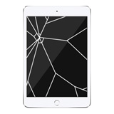 iPad Mini 2 Glass & LCD Replacement White
