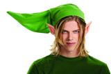 Legend of Zelda Link Deluxe Adult Kit