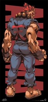 Street Fighter Akuma Door Poster