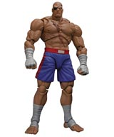 Street Fighter: Sagat Storm Collectibles Action Figure