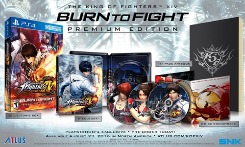 The King of Fighters XIV: Burn to Fight Premium Edition