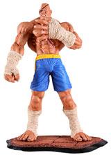 Street Fighter Sagat 12