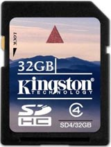 Nintendo Wii 32GB SDHC Memory Card