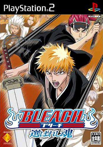 Bleach: Erabareshi Tamashi